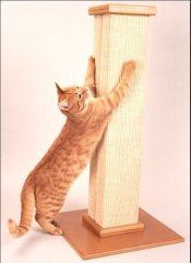 tall cat scratching post