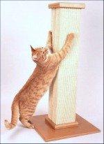 Healthy Cat Scratcher